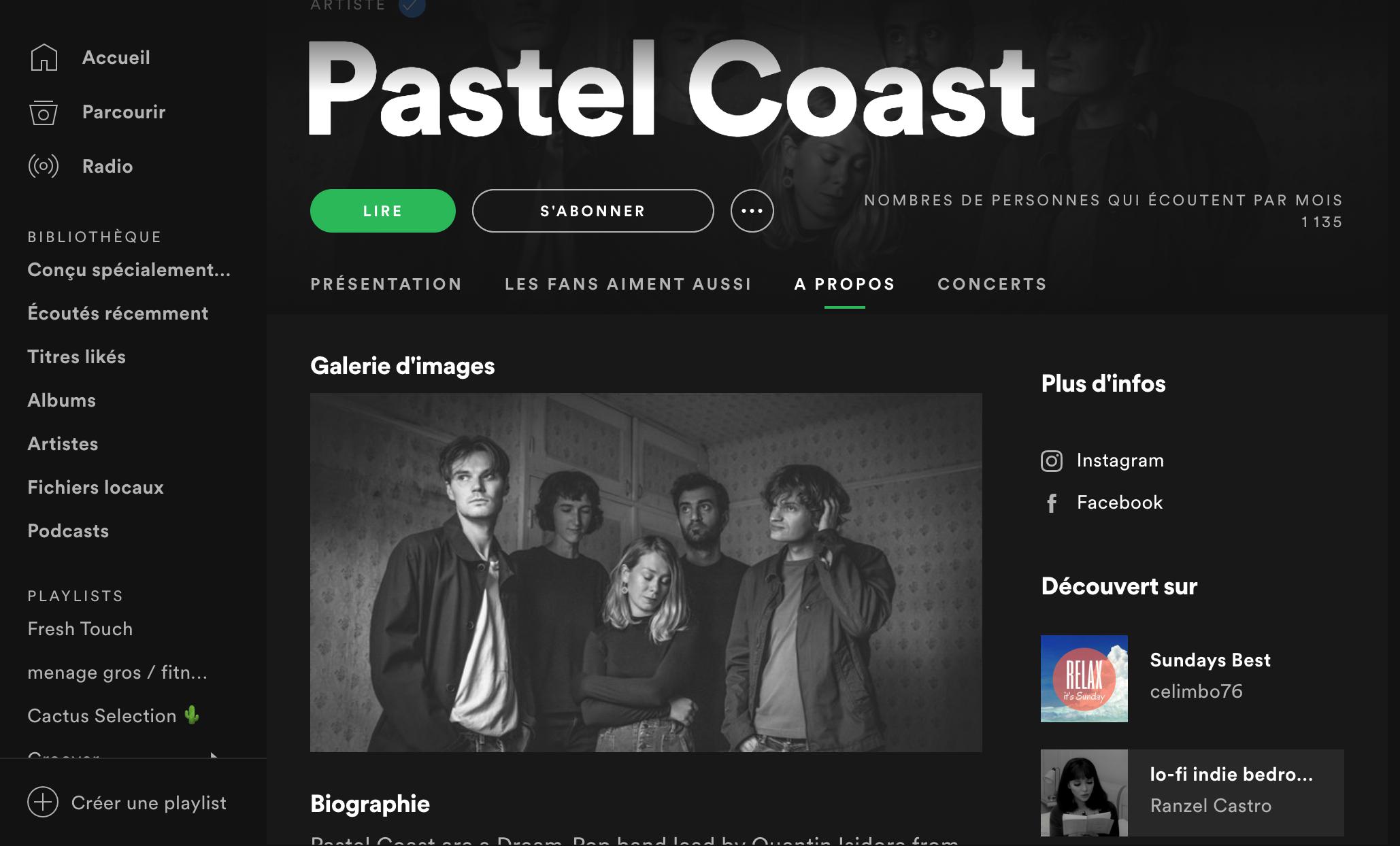 Exemples de playlists Spotify dans lesquelles sont apparus Pastel Coast