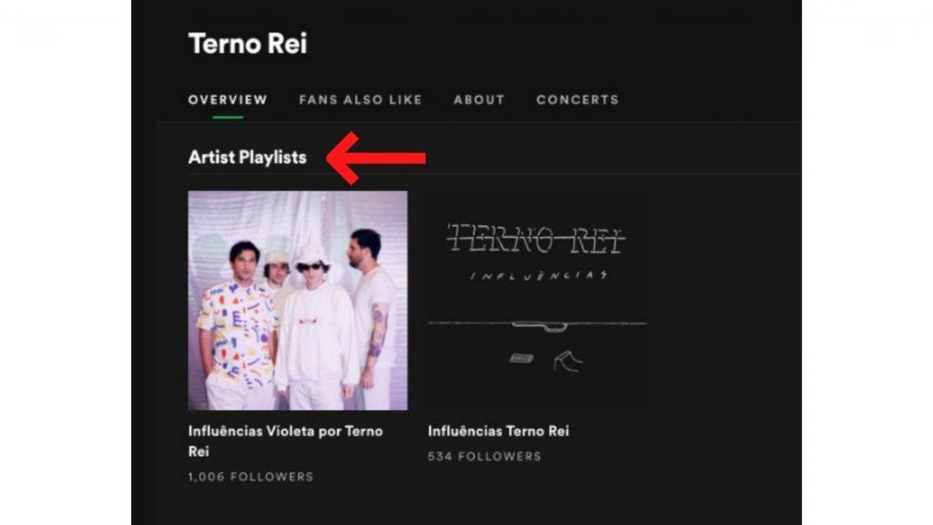 Playlists do Artista - Terno Rei