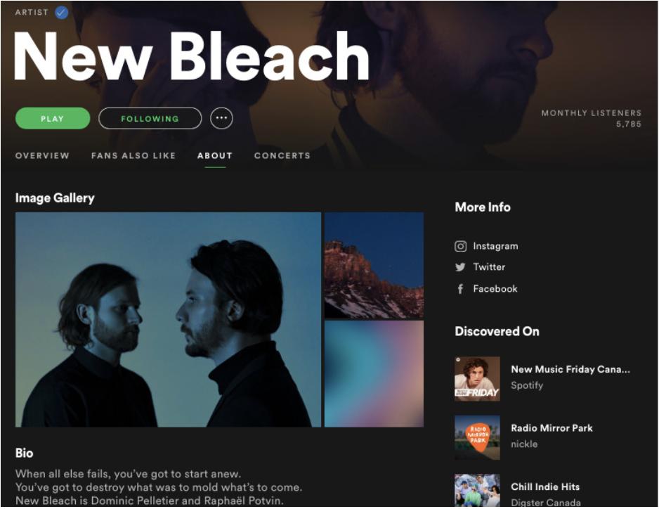 Un ejemplo de un artista Groover en playlists de Spotify