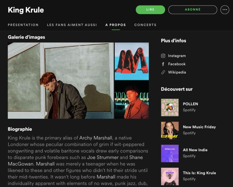 Página del artista King Krule en Spotify